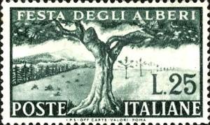 alberi25_big