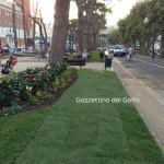 verde pubblico - bonifica ambientale