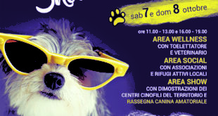 Pet show, amici a 4 zampe. A Formia rassegna canina amatoriale