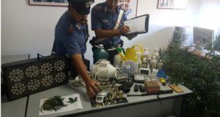 Minturno, piantagione di marijuana in casa: arrestati un uomo e una donna di Formia