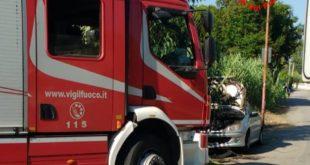 Incendio a Gianola: a fuoco sterpaglie e un canneto