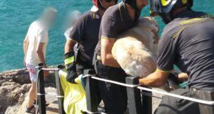 Labrador bloccato sugli scogli, salvato dai Vigili del Fuoco