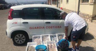 Guardia Costiera di Formia: sequestro di prodotto ittico venduto in spiaggia sotto il sole tra i bagnanti